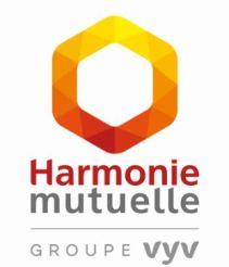 Logo-page-HM-VYV-carre